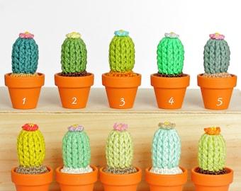 Cactus crochet, Déco cactus fleur, Amigurumi cactus artificiel, Faux cactus laine, Décoration d'intérieur, décoration bureau Merci maitresse