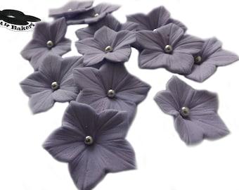 Purple Petunia Sugar Flowers Set With Silver Balls Edible Cake Cupcake Toppers 20