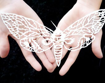 """Papercut artwork, paper sculpture """"Butterfly"""" original hand cut work in white, art silhouette of a bug by Eugenia Zoloto"""