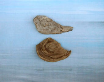 natural raw driftwood sculpture wood art supply 1006