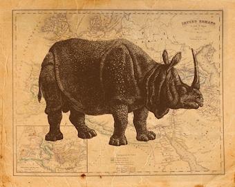 Vintage Rhino on Antique Roman Empire Map Print 8x10 P87