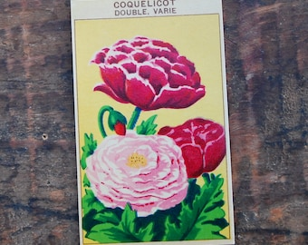 Original Vintage Flower Seed Label, Lithograph, French, Poppies, New Old Stock