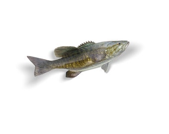 Smallmouth Bass Decal, Smallmouth Bass Sticker, Smallmouth Bass, Bass