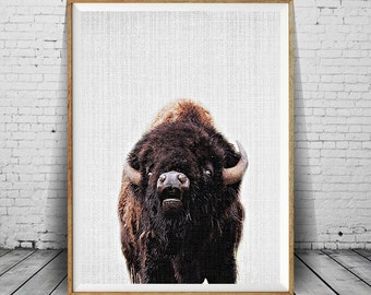 Buffalo Print, Bison Wall Art, Colour Nursery Animal, Printable Decor, Instant Download, Poster, Contemporary Modern Minimalist Photography