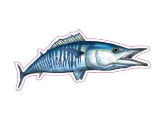 "9.5"" Wahoo Decal"