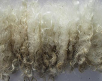 1oz Raw (Unwashed) Curly Mohair