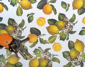 Paper ROSSI - LEMONS - made in Italy