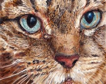 Custom Pet Portrait Tabby Cat - Cat Portrait - Cat Painting from your Photo - Portraits by NC