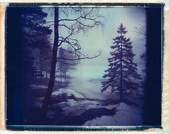 Norway, Old Polaroids, Mamiya, Polaroid Photography, Winter, Eerie, Misty, Woods, lake, type 670, Landscape Photography, Trees, Norwegian