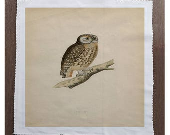 Owl Bird on Branch - Sewing, Cushion, Upholstery, Craft, Patchwork and Quilting Fabric Panel 100% cotton
