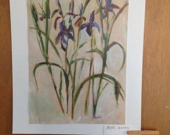 Maine Art - Irises - PRINT - 10.5x14.5 - 16x20 Mat