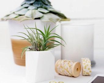 SUCCULENT PLANTER || Cactus Planter - Geometric Planter - Indoor Planter - Air Plant - Cactus Pot - Modern Planter - Plant Pot