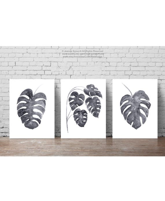 monstera feuilles illustration gris feuille dessin ensemble 3. Black Bedroom Furniture Sets. Home Design Ideas