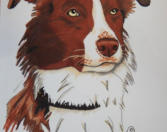 Custom dog drawing - example Border Collie Art Dog Portrait . Digital file