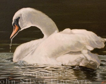 Aceo Bird Print. Mute Swan. Waterfowl. From an Original Painting by JOHN SILVER. Personally signed! BD006AC