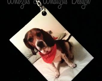 Easter pet gift etsy customer favorite pet picture keychain custom picture keychain pet loss gifts pet negle Image collections