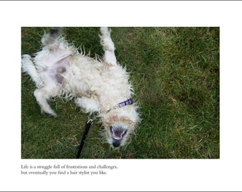 Westie Dog Card - Blank Inside - Friend Card - Just For Fun - Any Occasion Greeting Card