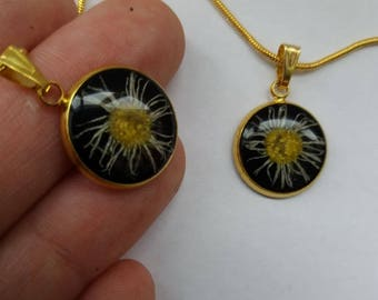 necklace with real daisy flower