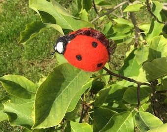 Ladybug brooch