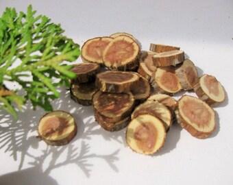 """20 Juniper wood tree branch slices.  Juniper wood craft discs. Rustic wedding decor. 1 1/4"""" (+-)"""