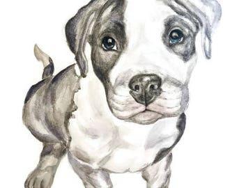 Pit Bull portrait, custom pet portrait, watercolor per portrait, original watercolor, custom dog portrait, portrait from photo, dog portrait