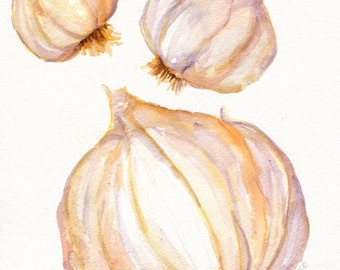 Garlic watercolor painting original, Garlic 8 x 10, rustic kitchen decor, garlic art, original watercolor painting garlic bulbs illustration