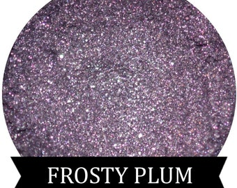 FROSTY PLUM Shimmery Purple Eyeshadow