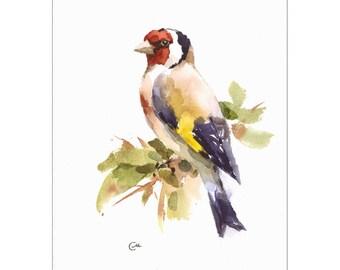 European Goldfinch - Original Watercolor Bird Painting 7 x 9 1/4 inches Nature
