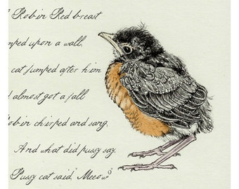 Young Baby Robin Digital Reproduction Print
