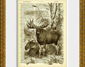 MOOSE PAIR art print - dictionary page print - antique dictionary page with a antique moose illustration- upcycled vintage art, home decor
