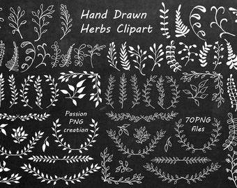 Big Set of White Hand Drawn Herbs Clipart, Chalkboard clipart , Herbs Silhouette, PNG, Laurel Clipart, Personal and Commercial Use