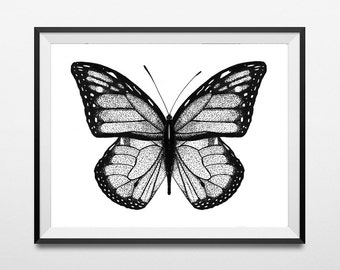 Monarch Butterfly - Drawing