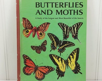Butterflies and Moths by Richard Martin 1958 Golden Library of Knowledge #7806