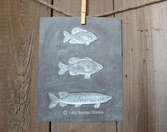 "Freshwater Fish 8x10"" Chalkboard Print - Woodland Nursery Print- Nature Inspired Art"