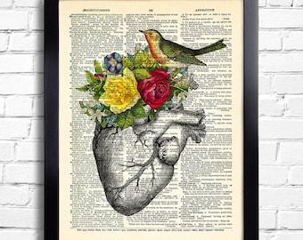 Anatomy Heart BIRD Art Print Rose Flowers, Human heart POSTER Dictionary Art Print, anatomy heart poster Wall Decor, Cool Bedroom Art 055