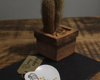 Personalised ring dish, anniversary gift, wedding gift, polymer clay, trinket, keepsake