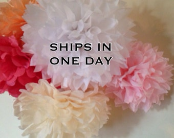 10 tissue paper pom poms / wedding decorations, birthday decor, bridal shower, baby shower, nursery decor, tea party