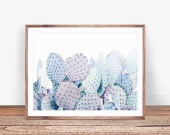 Cactus Wall Art, Desert Wall Art, Desert Photography,South Western Wall Art, Desert Digital Download, Cactus Art Print, Modern Cactus Print