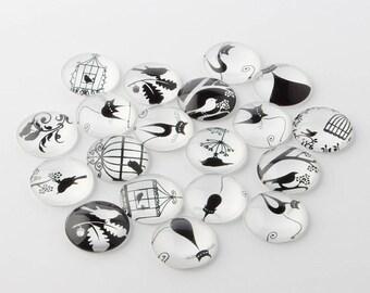 black & White Bird glass cabochon model 3