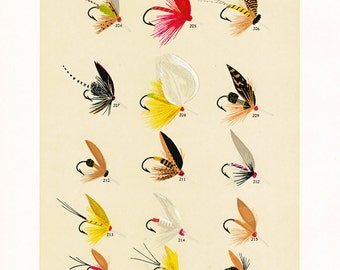 fly fishing print from the 19th century, printable digital download, collage sheet no. 940