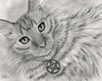 Long Haired Tabby Cat Tarot Art Cat Portrait Drawing Page of Pentacles Fantasy Cat Art Print 5x7 Cat Lovers Art