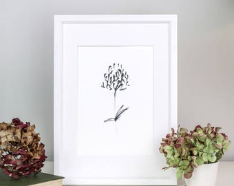 Black and White Wild Clover Flower Fine Art Limited Edition Giclee Print