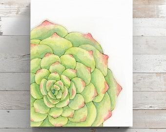 Succulent Canvas Print from original watercolor painting - Succulent Art - Wrapped Canvas Print