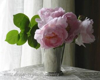 Pink Rose Photography, Pale Pink Rose Art,Blush Pink Rose Print,Pastel Still Life Rose,Floral Print Art,Desaturated Flower Print Shabby Chic