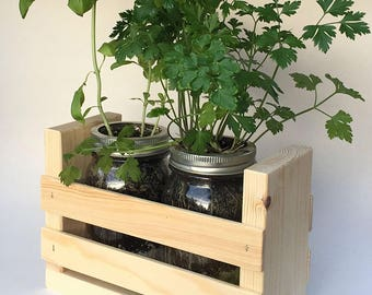 Herb Garden Duo-Great for Growing an Indoor Herb Garden, Includes Everything You Need (Cilantro, Basil, Parsley) in a Simple Pine Container