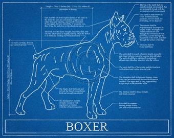 Boxer Dog Blueprint Elevation / Boxer Dog Art / Boxer Dog Wall Art / Boxer Dog Gift / Boxer Dog Print