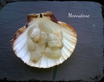 Beautiful creamy white genuine moonstone tumble stones, lunar energy, crystal crids, use in reiki