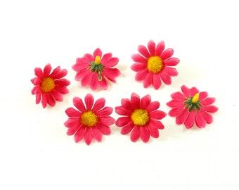 Set of 10 fuchsia Stemless daisy flowers - fuchsia
