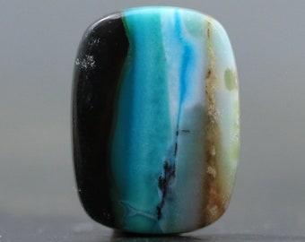Blue Opal Wood Fossil Ultra Rare Natural Organic Specimen Polished Organic Stone (V4297)
