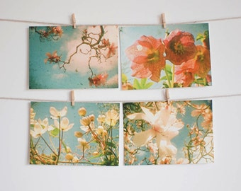 Postcard Set, Spring Flowers, Nature Photography, Peach, Pink and Cream, Magnolia, Clematis, Affordable Art - Flower